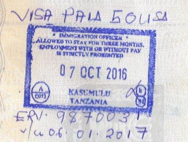 Bизы в Кению и Танзанию в аэропорту по прилету